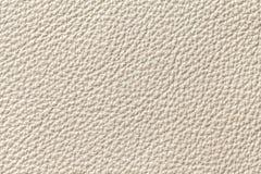Fundo brilhante da textura do couro da pérola com teste padrão, close up imagens de stock royalty free