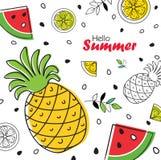 Fundo brilhante do fruto de ÑŒSummer do 'do ‡ Ð°Ñ de ПÐ?Ñ com abacaxi, fatias de laranja e melancia Imagem de Stock Royalty Free