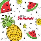 Fundo brilhante do fruto do verão com abacaxi, fatias de laranja e melancia Imagens de Stock