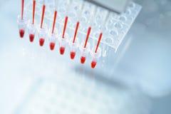 Fundo científico no assunto da análise do ADN imagens de stock royalty free