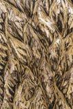 Fundo cinzelado de madeira Cinzeladura Handmade da madeira Fundo de madeira foto de stock