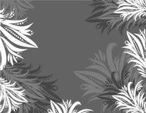 Fundo cinzento abstrato Imagem de Stock
