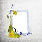 Fundo cinzento com frame Imagem de Stock