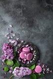 Fundo cinzento da textura com macarons da amora-preta no pla do vintage Imagens de Stock