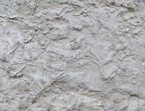 Fundo cinzento do cimento Imagens de Stock