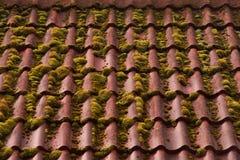 fundo coberto de vegetação da textura do telhado da telha vermelha imagem de stock
