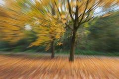 Fundo colorido abstrato do outono do movimento Foto de Stock Royalty Free
