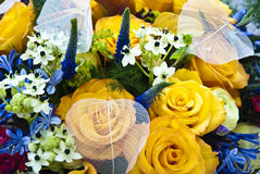 Fundo colorido bonito da flor Imagem de Stock Royalty Free