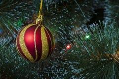 Fundo colorido com a árvore de Natal decorada Imagem de Stock
