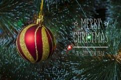 Fundo colorido com a árvore de Natal decorada Imagens de Stock Royalty Free