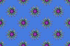 Fundo colorido com as flores espinhosos do arco-íris foto de stock
