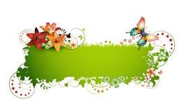 Fundo colorido com borboleta Imagens de Stock