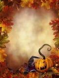 Fundo colorido com folhas Imagens de Stock