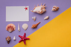 Fundo colorido com lembranças marinhas Foto de Stock Royalty Free