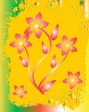 Fundo colorido da flor Imagens de Stock Royalty Free