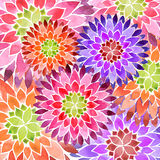Fundo colorido da mola da flor imagens de stock