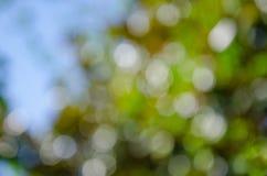 Fundo colorido da natureza abstrata no estilo do bokeh fotografia de stock