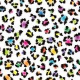Fundo colorido da pele do leopardo Foto de Stock Royalty Free