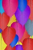 Fundo colorido da textura da folha do bodhi da folha do bodhi Fotografia de Stock Royalty Free