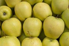 Fundo colorido da textura do teste padrão do fruto verde fresco do sumário da maçã foto de stock royalty free