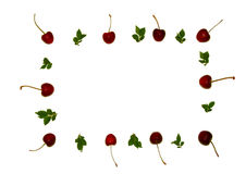 Fundo colorido das cerejas e das folhas do verde abstraia o fundo Muitas bagas Cerejas com um ramo foto de stock royalty free