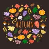 Fundo colorido do outono com folhas, abóboras e cogumelos imagens de stock royalty free