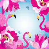 Fundo colorido floral com flamingos ilustração royalty free