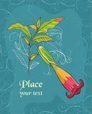 Fundo com única flor e teste padrão abstrato Foto de Stock Royalty Free