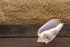 Fundo com areia da praia Foto de Stock