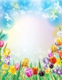 Fundo com as flores multicoloridos da mola ilustração stock