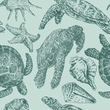 Fundo com as tartarugas de mar Imagens de Stock Royalty Free