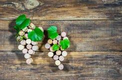 Fundo com as uvas para vinho de cortiça do vinho e de folhas do verde Foto de Stock Royalty Free