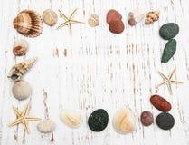 Fundo com conchas do mar e estrelas do mar fotografia de stock