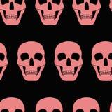 Fundo com crânios cor-de-rosa Fotografia de Stock