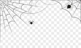 Fundo com duas Web de aranha isolado Conceito de Halloween Foto de Stock