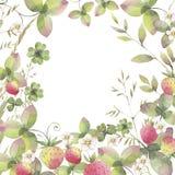 Fundo com elementos diferentes da erva floral Manh? na explora??o agr?cola bonita da morango ilustração stock