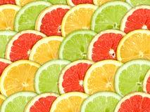 Fundo com fatias das citrinas Fotografia de Stock Royalty Free