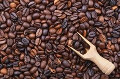 Fundo com feijões de café Imagem de Stock Royalty Free