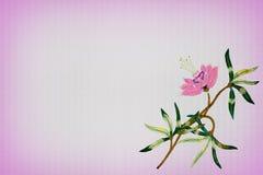 Fundo com a flor cor-de-rosa bordada Fotografia de Stock Royalty Free