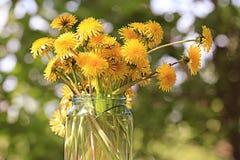 Fundo com flores da mola Foto de Stock