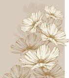 Fundo com flores de florescência ilustração do vetor