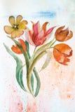 Fundo com flores dos tulips Fotos de Stock Royalty Free