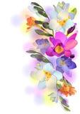 Fundo com flores e filiais do freesia Fotos de Stock