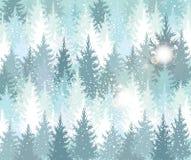 Fundo com floresta do inverno Fotografia de Stock Royalty Free