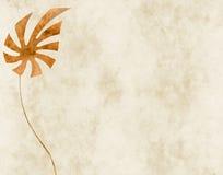 Fundo com folha exótica Foto de Stock Royalty Free