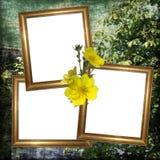 Fundo com frame e flores Imagem de Stock Royalty Free