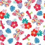 Fundo com hibiscus da flor e borboletas do voo Foto de Stock