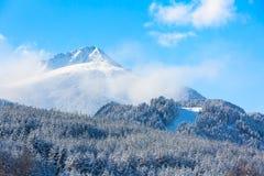 Fundo com inclinações, pico do esqui do curso de montanha da neve, copyspace Imagem de Stock Royalty Free
