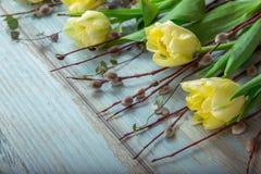 Fundo com luz - tulipas amarelas na mesa de madeira azul Páscoa, ` s da mãe, Valentim, dia do ` s das mulheres Vista superior com Fotografia de Stock Royalty Free