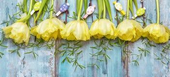 Fundo com luz - tulipas amarelas na mesa de madeira azul Páscoa, ` s da mãe, Valentim, dia do ` s das mulheres Vista superior com Imagens de Stock